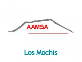 AAMSA-LOSMOCHIS